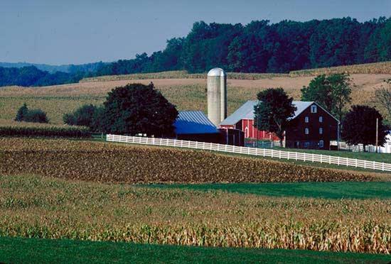 7 Financial Benefits of Rural Living