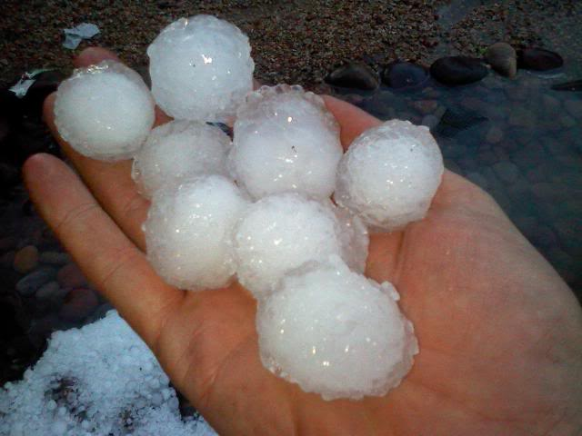 Hail, NO! And Other Natural Disasters