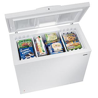 I Want a Chest Freezer to Save Money