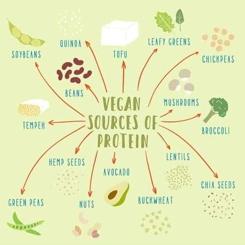vegetarian sources of protein